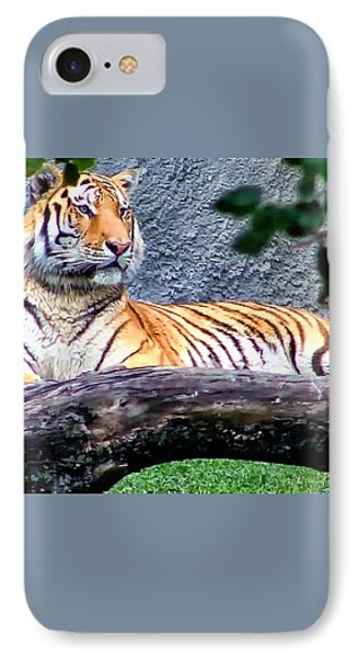 IPhone Case featuring the photograph Tiger 1 by Dawn Eshelman