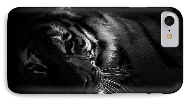 Tiger Beauty IPhone Case