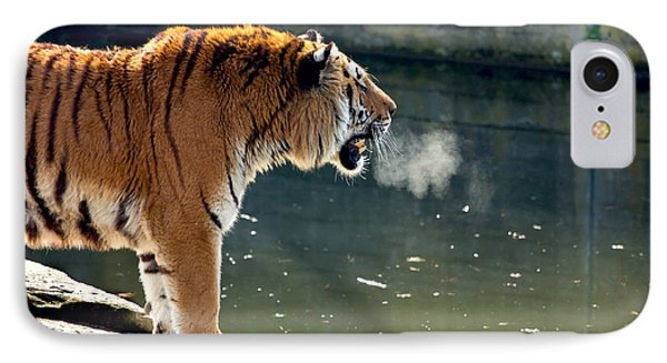 Tiger Breathing Into Cold Air By The Water IPhone Case by Pati Photography