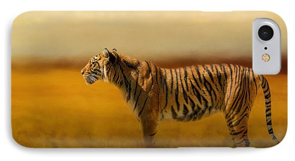 Tiger In The Golden Field IPhone Case by Jai Johnson