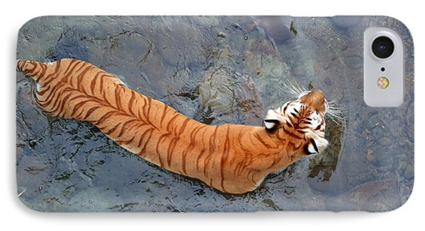 IPhone Case featuring the photograph Tiger In The Stream by Robert Meanor