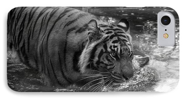 IPhone Case featuring the photograph Tiger In The Water by Lisa L Silva