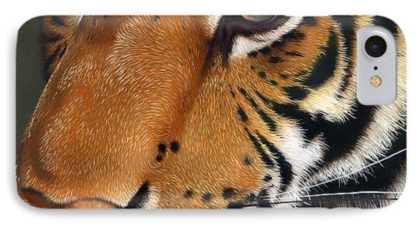 Tiger Phone Case by Jurek Zamoyski