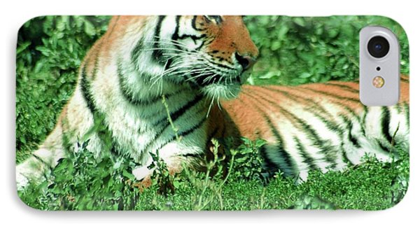 Tiger Phone Case by Kathleen Struckle