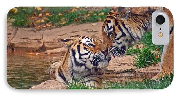 Tiger Kiss Phone Case by David Rucker