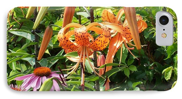 Tiger Lilies IPhone Case by Catherine Gagne