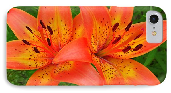 Tiger Lilies Phone Case by Ramona Johnston
