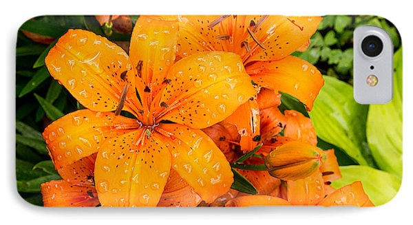 Tiger Lily After Morning Rain IPhone Case