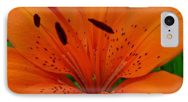 IPhone Case featuring the photograph Tiger Lily by Bianca Nadeau