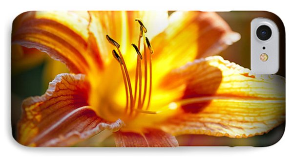 Tiger Lily Flower IPhone Case by Elena Elisseeva