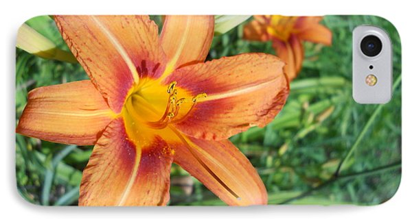 IPhone Case featuring the photograph Tiger Lily by Yolanda Raker