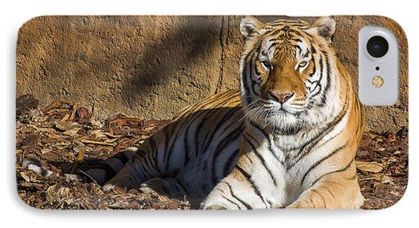Tiger Phone Case by Steven Ralser