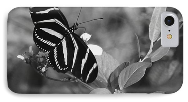 Tiger Stripe Butterfly IPhone Case by Joseph G Holland