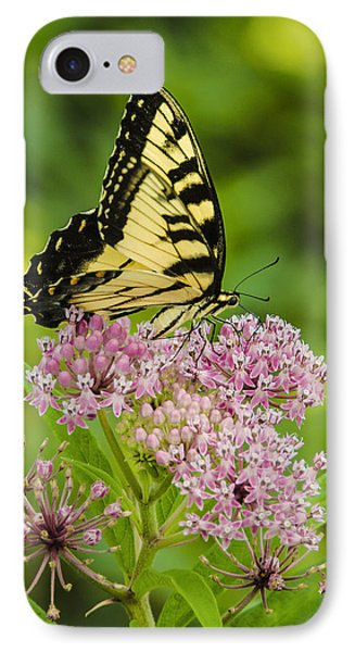 IPhone Case featuring the photograph Tiger Swallow Tail by Bradley Clay