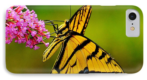 Tiger Swallowtail Butterfly Phone Case by Karen Slagle