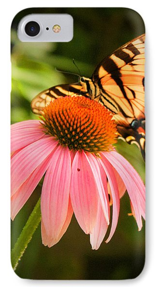 Tiger Swallowtail Feeding IPhone Case