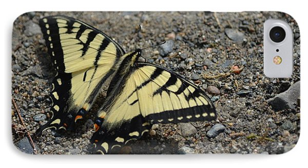 IPhone Case featuring the photograph Tiger Swallowtail by James Petersen