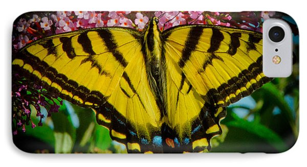 IPhone Case featuring the photograph Tiger Swallowtail  by Janis Knight