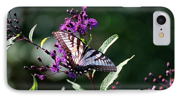 IPhone Case featuring the photograph Tiger Swallowtail On Purple by Beth Akerman