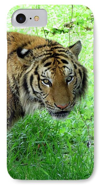 Tiger Tiger Phone Case by Ramona Johnston