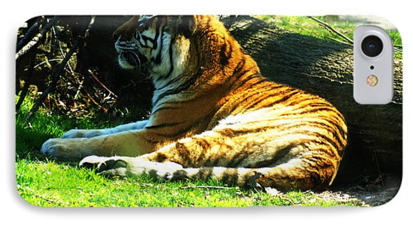 IPhone Case featuring the photograph Tiger Too by B Wayne Mullins
