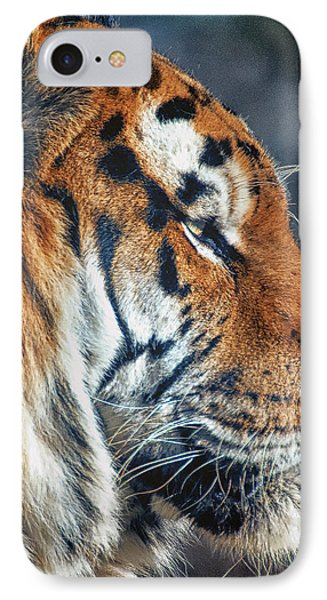 Tiger Watch IPhone Case by Chris Boulton