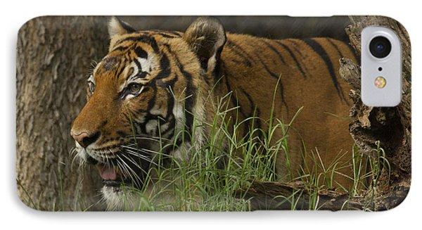 Tiger2 IPhone Case