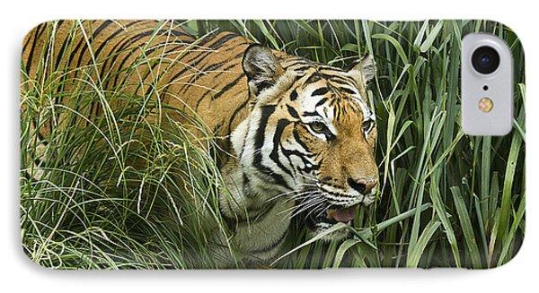 Tiger4 IPhone Case