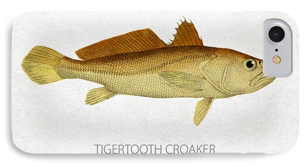 Tigertooth Croaker IPhone Case by Aged Pixel