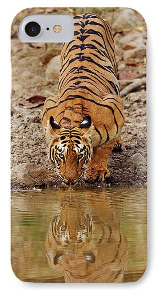 Tigress, Drinking At The Waterhole IPhone Case
