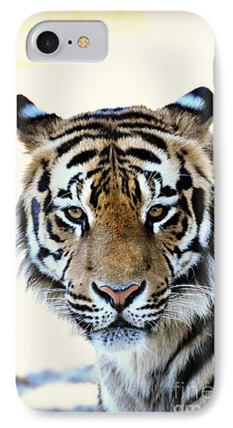 Tigris IPhone Case by Mindy Bench