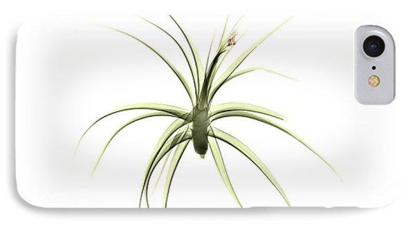 Tillandsia Plant IPhone Case by Albert Koetsier X-ray