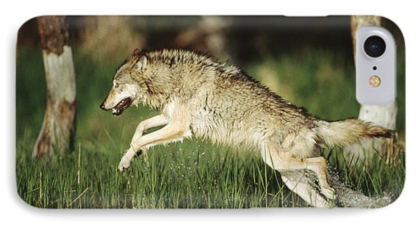 Timber Running Through Water IPhone Case by Tim Fitzharris