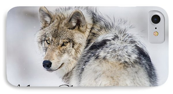 Timber Wolf Christmas Card 2 IPhone Case