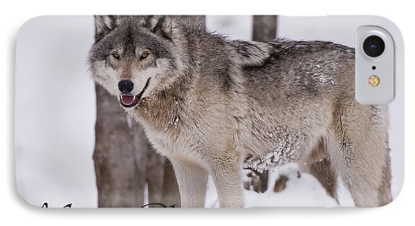 Timber Wolf Christmas Card English 3 IPhone Case