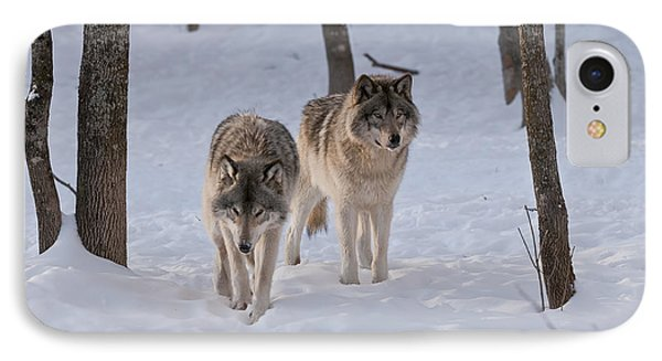 IPhone Case featuring the photograph Timber Wolf Pair  by Wolves Only