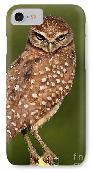 Tiny Burrowing Owl Phone Case by Sabrina L Ryan