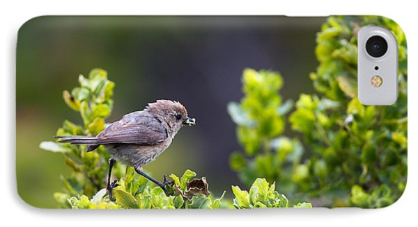 Bushtit Bags A Bug IPhone Case by Martha Marks