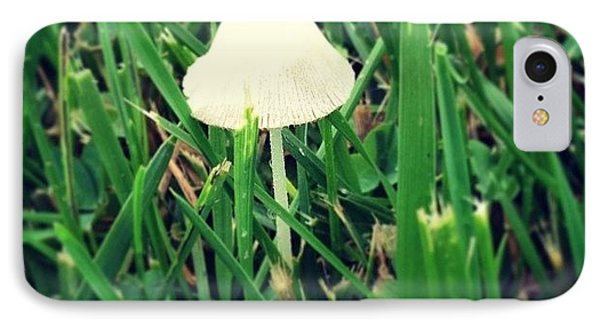 Tiny Mushroom In Grass #mushroom #grass IPhone Case by Marianna Mills