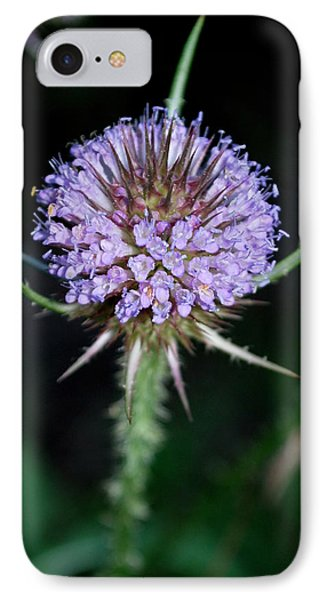 IPhone Case featuring the photograph Tiny Petals by Mary Beth Landis