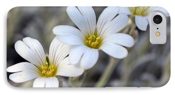 Tiny White Flowers #1 IPhone Case