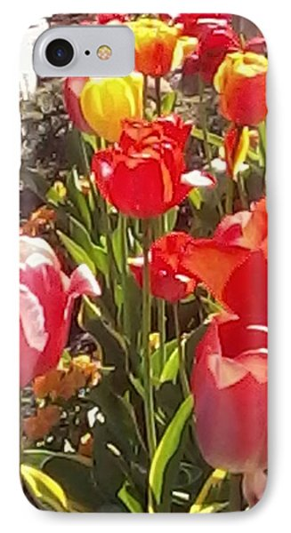 Tip Toe Thru The Tulips IPhone Case by Vickie G Buccini