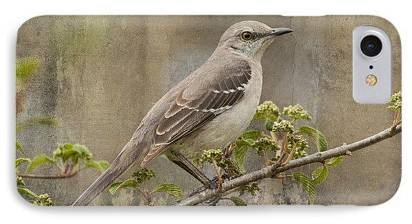 To Still A Mockingbird IPhone Case by Kathy Clark