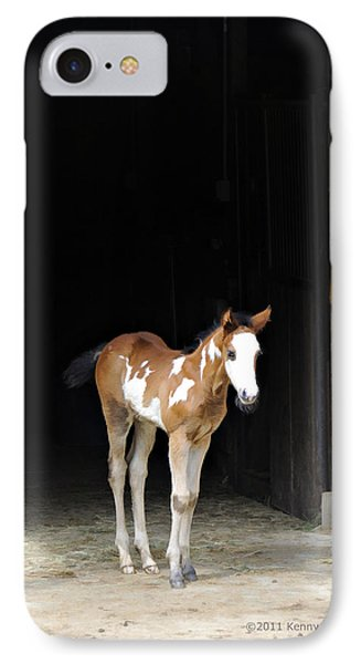Toccoa At The Barn IPhone Case by Kenny Francis
