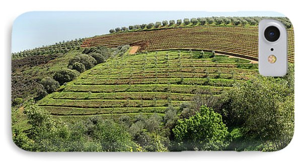 Tokara Vineyard, Delaire Graff Estate IPhone Case by Panoramic Images