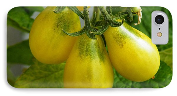 Tomato Triptych IPhone Case by Brian Boyle
