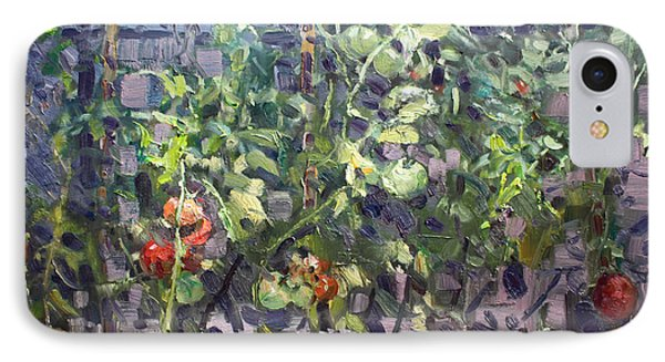 Tomatoes In Viola's Garden  IPhone Case by Ylli Haruni