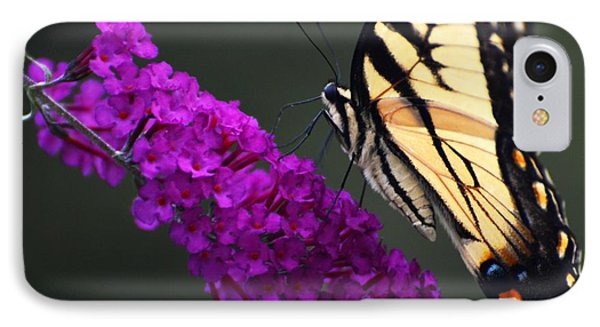 Too Close For Comfort IPhone Case by Judy Wolinsky