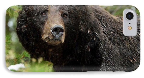 IPhone Case featuring the photograph Too Close For Comfort by Yeates Photography