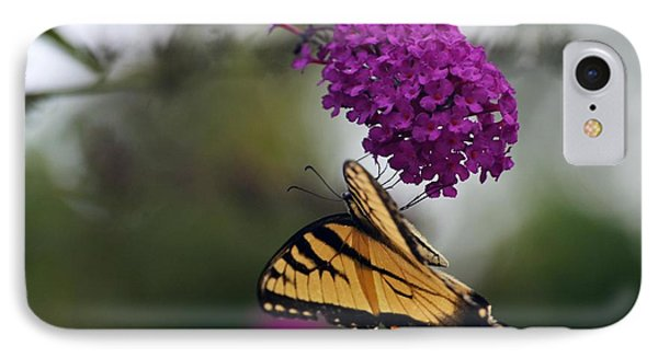 IPhone Case featuring the photograph Topsy Turvy by Judy Wolinsky